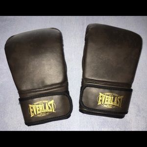 Everlast Boxing Sparring Gloves Lightweight New